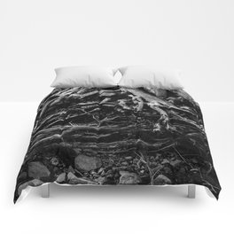 Black and White Tree Root Photography Print Comforters