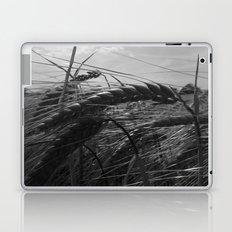 Summer Fields #1 Laptop & iPad Skin