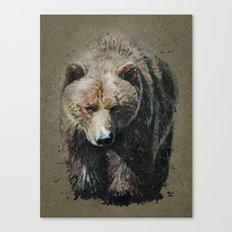 Bear background Canvas Print