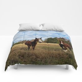 Two Horse Amigos in Pasture Comforters