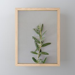 Green and grey | Floral photography Framed Mini Art Print