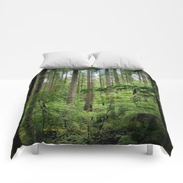 The Forest Comforters