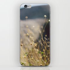 In the Desert iPhone & iPod Skin
