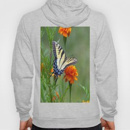 Yellow female Eastern Tiger Swallowtail  Hoody