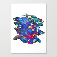FIGHTING FISHES BETTA - Animals | Psychedelic | 70's | Abstract | Pop | Surrealism | Nature Canvas Print