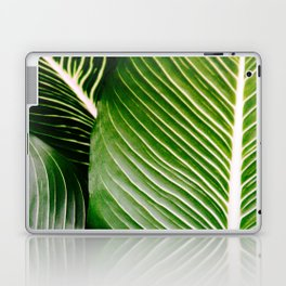 Big Leaves - Tropical Nature Photography Laptop & iPad Skin
