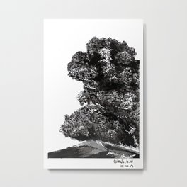 Ash landscape Metal Print
