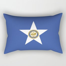 American cities-  Flag of Houston. Rectangular Pillow
