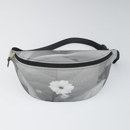 Paper Plant B&W Fanny Pack
