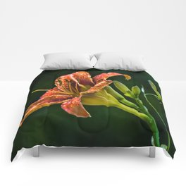 A Day Lily Comforters