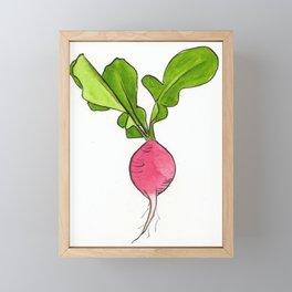 Radish Framed Mini Art Print