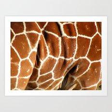 Giraffe Skin Close-up Art Print