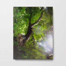 Deer Tree Metal Print
