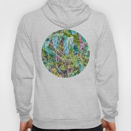 Budding in the rainforest Hoody