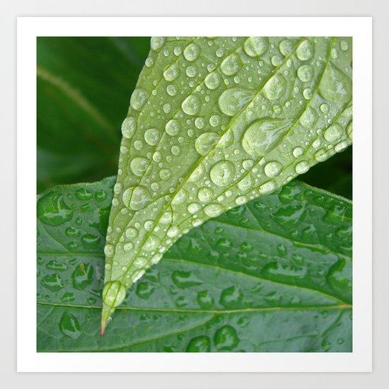 rainy drops I Art Print