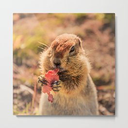 Have a smile for breakfast Metal Print