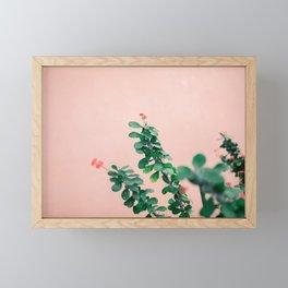 Floral photography print | Green on coral | Botanical photo art Framed Mini Art Print