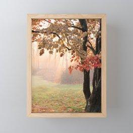 Japanese Maple at Sunrise in Fall Framed Mini Art Print