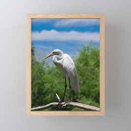 Great Egret Two - Utah Framed Mini Art Print