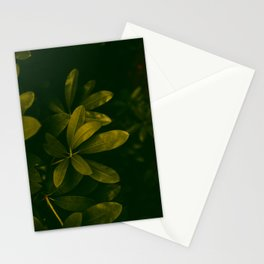 Olive Green Leaves Stationery Cards