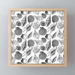 Sea and Ocean Life-Shell Pattern - Mix & Match with Simplicity of life Framed Mini Art Print