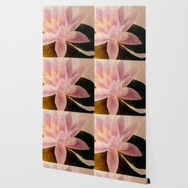 Lotus of my Heart Wallpaper