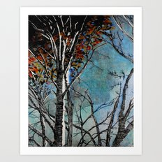 Land of the Silver Birch Art Print