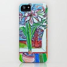 amaryllis Slim Case iPhone (5, 5s)