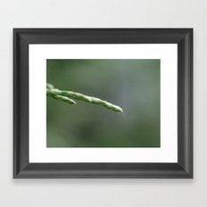 Connected (1) Framed Art Print