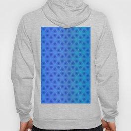 Triangulation Variation 4 Hoody