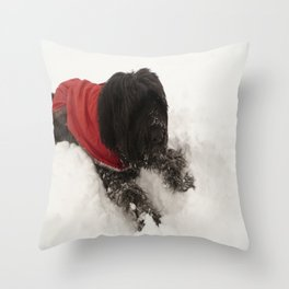 Briard in the Snow Throw Pillow