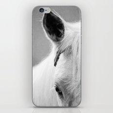 The White Horse iPhone & iPod Skin