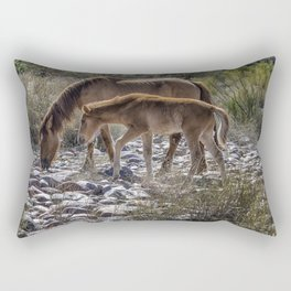 Salt River Mare and Her Colt, No. 2 Rectangular Pillow