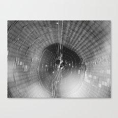 spider web 2016 II Canvas Print
