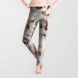 *cats*cats*cats* Leggings