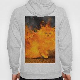 Fire Cat Hoody