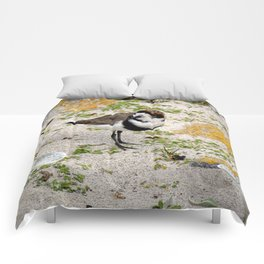 Two Ring Plover Comforters