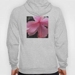 Dewdrops on Tropical Pink Flower Hoody
