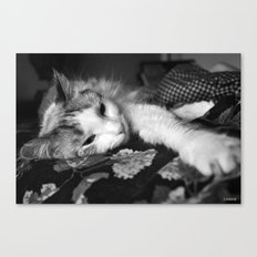 All Wore Out! Canvas Print