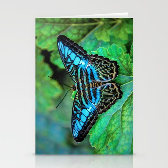 BUTTERFLY BLUE Stationery Cards