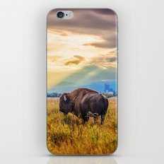 The Great American Bison iPhone & iPod Skin