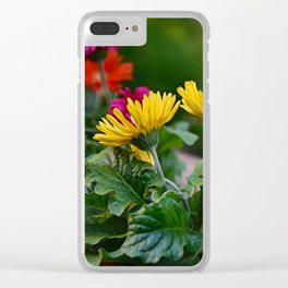 Spring Colors Clear iPhone Case