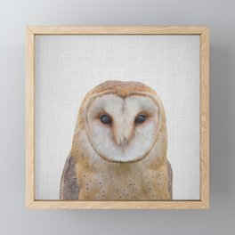 Owl - Colorful Framed Mini Art Print