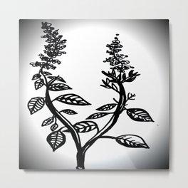 Basil Metal Print