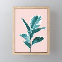 Ficus Elastica Finesse #2 #tropical #foliage #decor #art #society6 Framed Mini Art Print