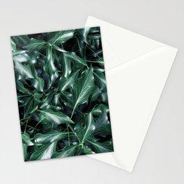 Ivy 01 Stationery Cards