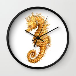 Sea horse, Horse of the seas, Seahorse beauty Wall Clock
