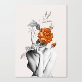 Rose 3 Canvas Print
