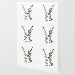 Eucalyptus Branches I Wallpaper
