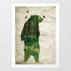 wild bear Art Print